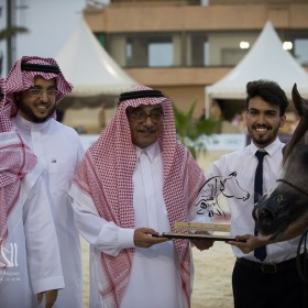 Taif 2017 6th Local breeders Arabian Horses Championship