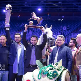 2017 World Arabian Horses Championship